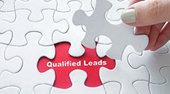 Qualified Lead Process
